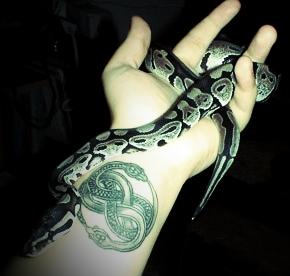 Atharim snake.jpg