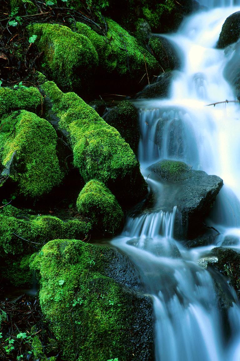 Yosemite NP 02.jpg