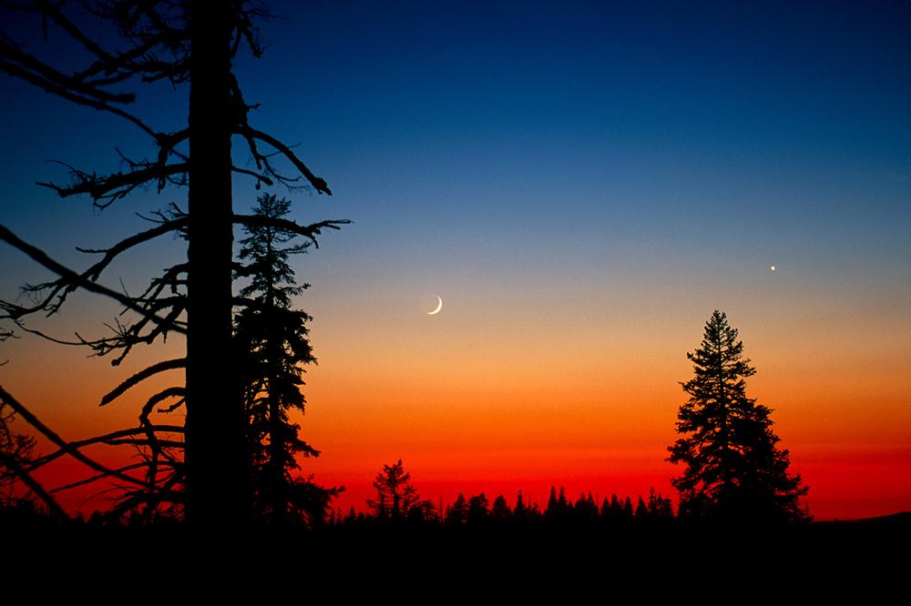 Yosemite NP 57.jpg