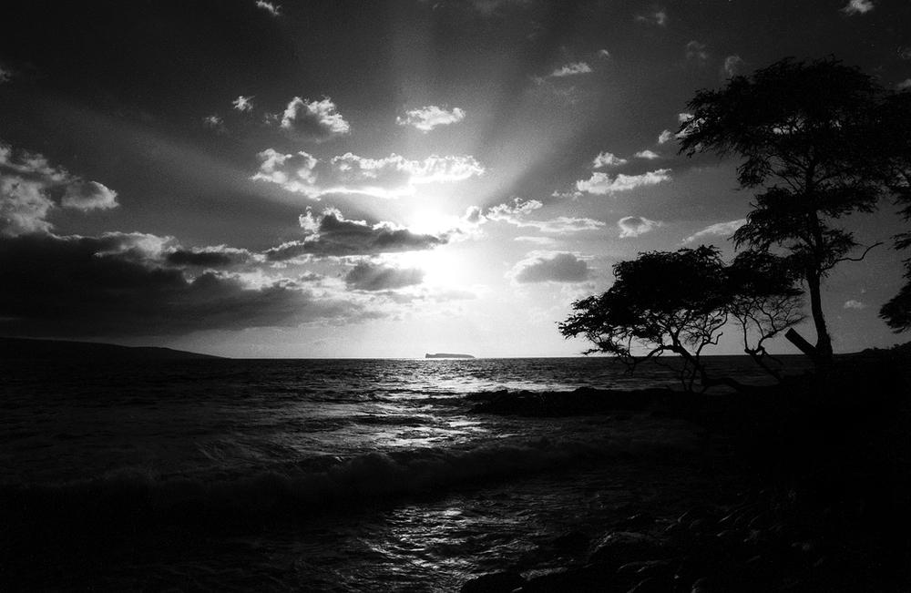 MauiHawaii 13.jpg