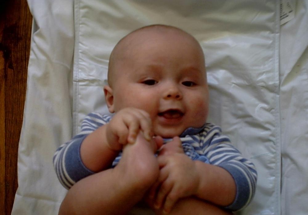 Celeus baby yrs 390.jpg