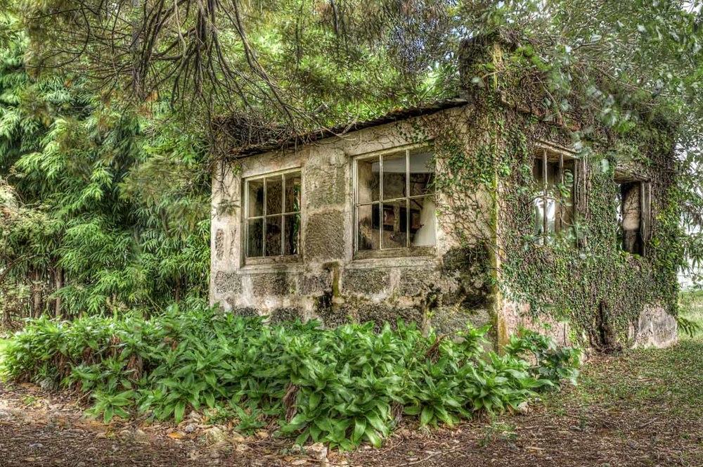 Beautiful Hut at Guinea Plantation....