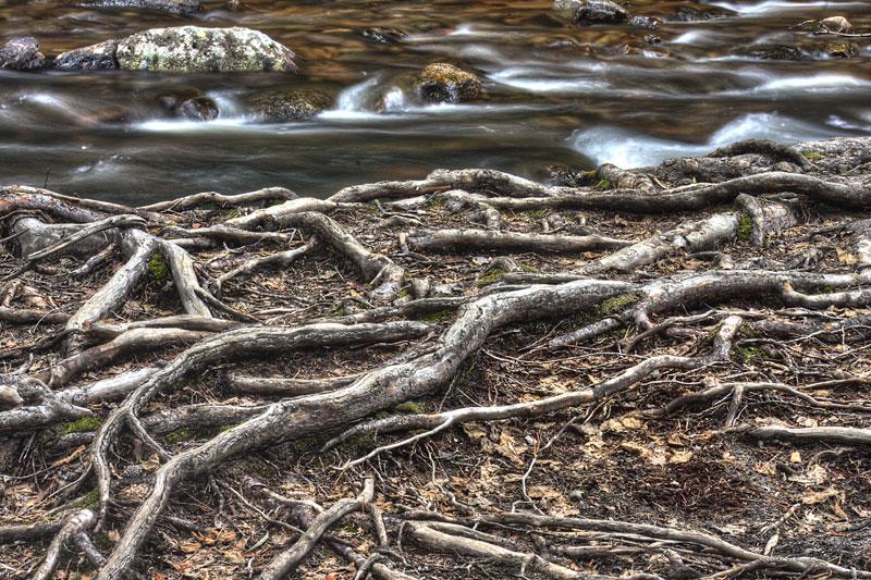 Adams Falls, RMNP