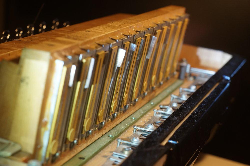 03 Nigel Brown - instrument - Photo by Nigel Brown.JPG