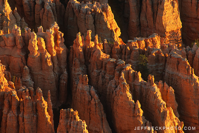 bryce canyon np.jpg