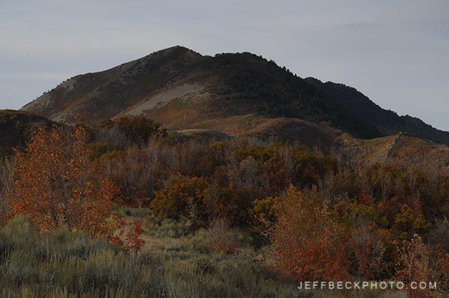 The Way Back, Emigration Canyon, Utah