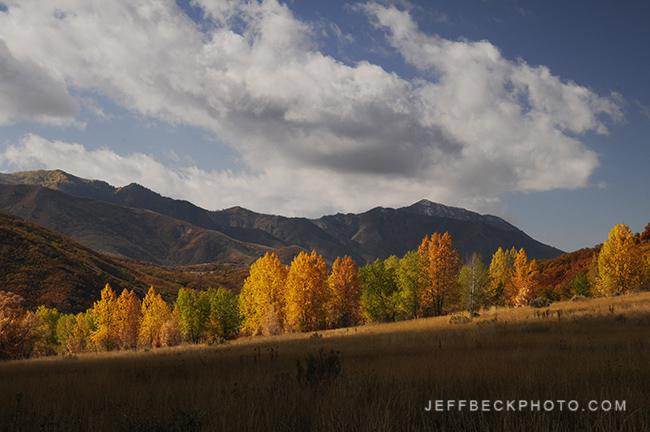 Along the Mormon Trail, Mountain Dell Canyon, Utah