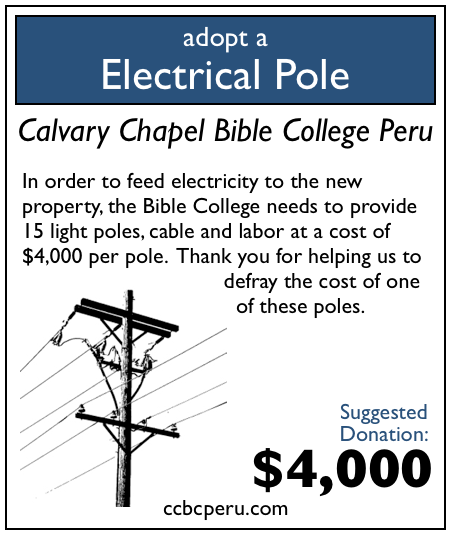 0 of 15 electrical power poles adopted!