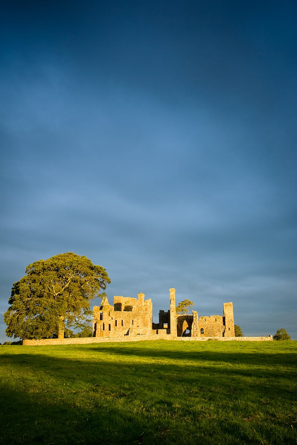 Bective Abbey, Co Meath