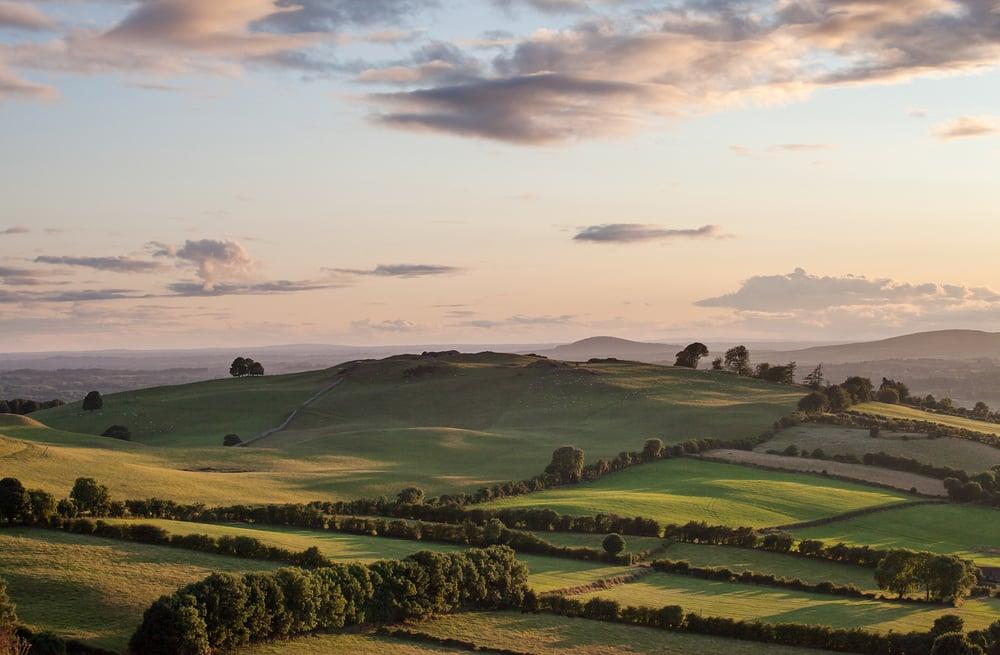 Meath Farmland