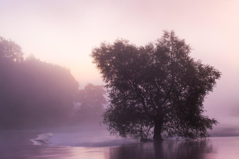 River Boyne - Co Meath