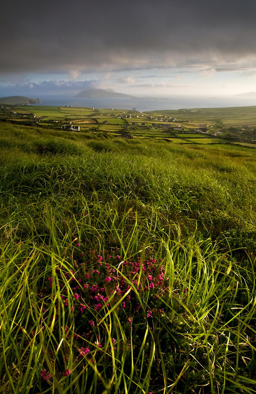 Dunquin View, Kerry Ireland.jpg