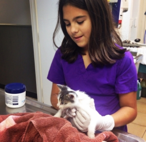 Our youngest volunteer holds a foundling.
