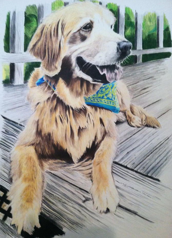 Ireland-18 X 24 Prismacolor Color Pencil    For Martha Touchstone courtesy of Donna Touchstone    Greensboro, NC-May 2012