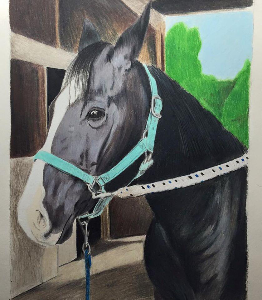 horse 2015 mary derfel.jpg