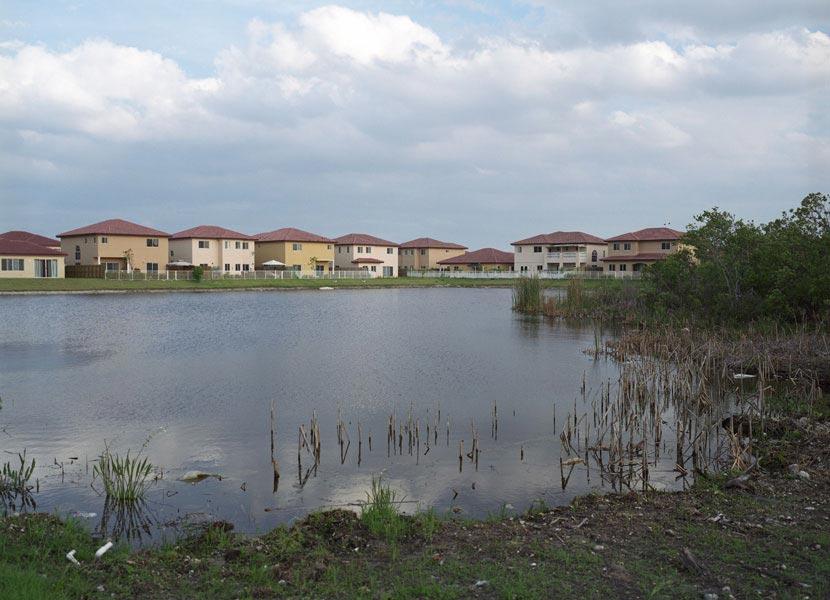 UDB-wetlands.jpg