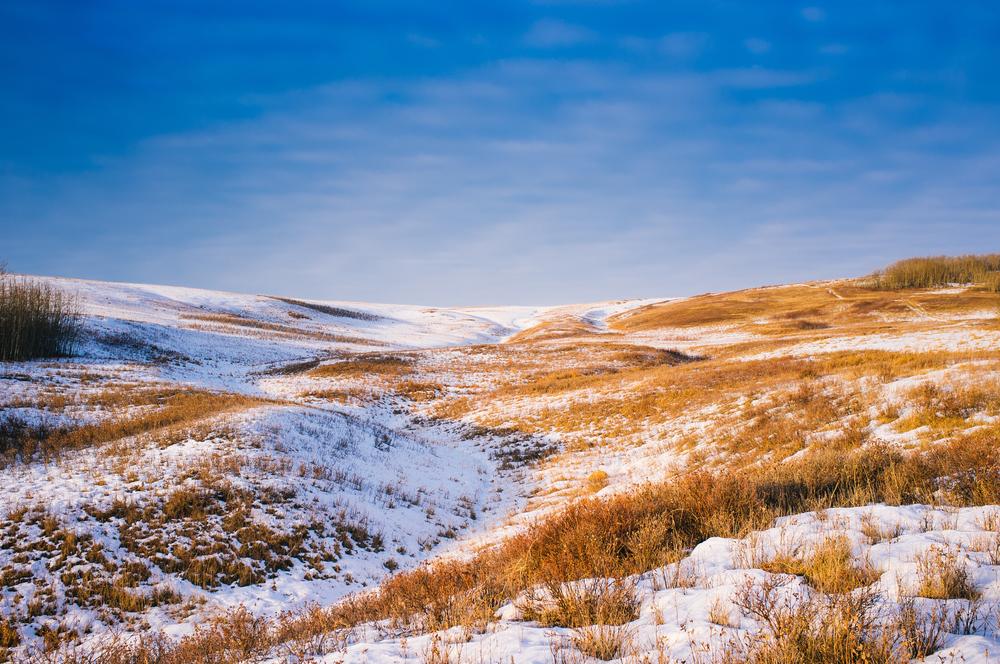 Nose Hill. Calgary, Alberta, 2013.