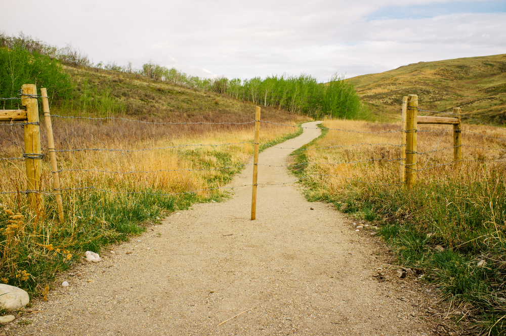 Glenbow Ranch. Alberta.
