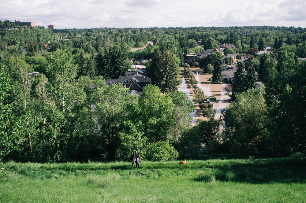 Elbow Park from above the Glencoe Club. This is the neighbourhood I waded through this morning. The river, moving fast, is visible along Elbow Drive two blocks into the background. A friend has family down there.