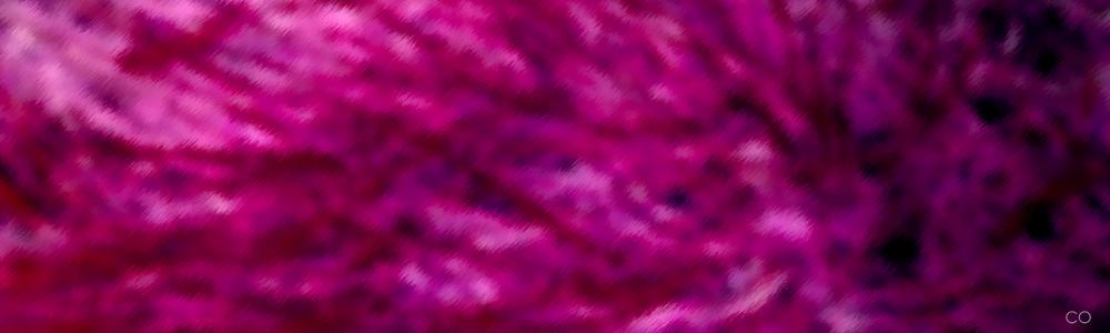 Pink Ember