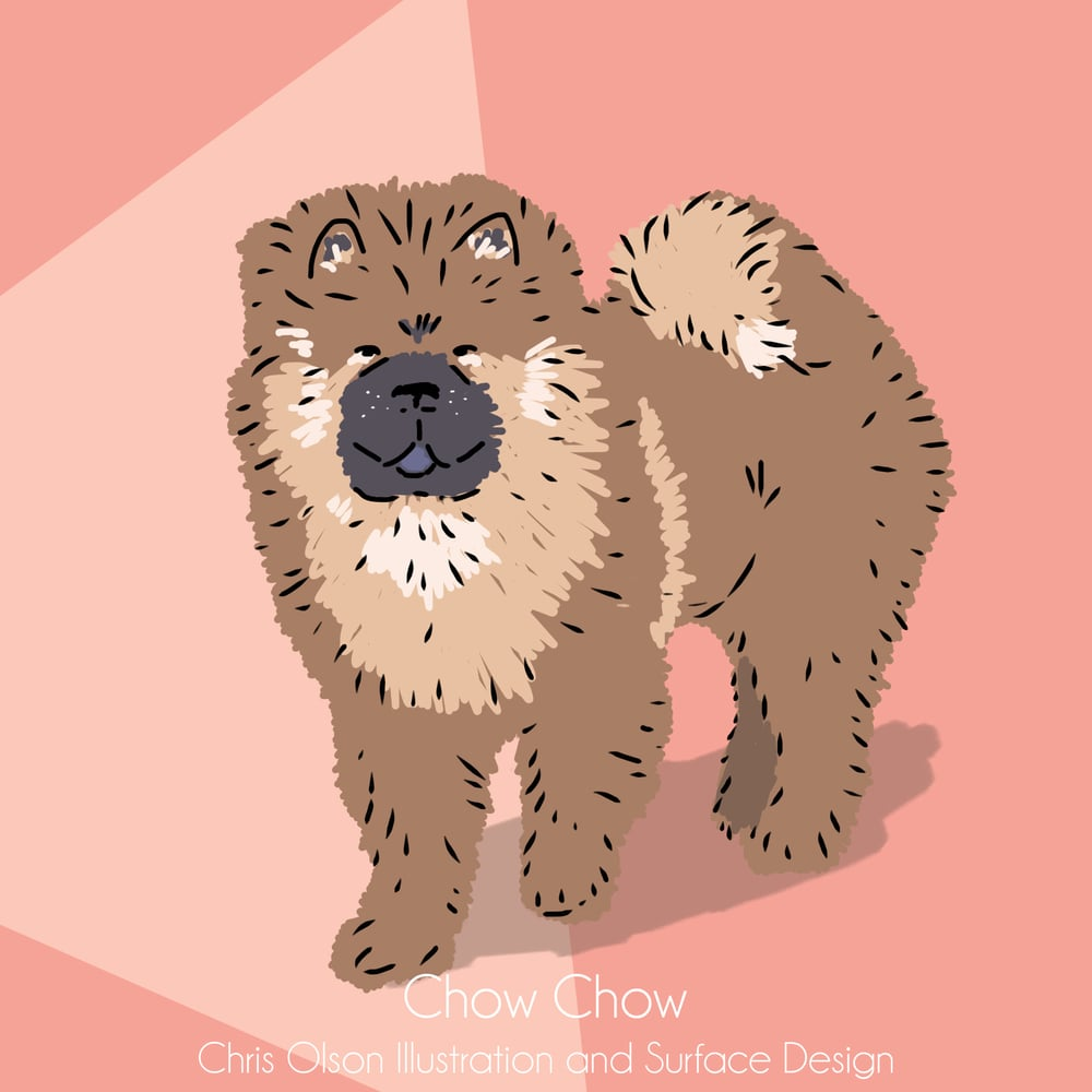 Chow Chow dog illustration by Chris Olson