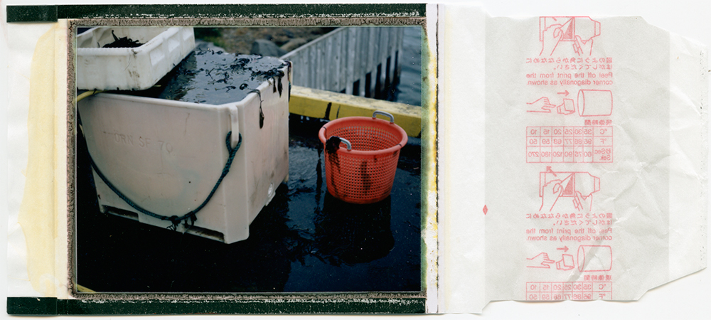 10km to shore / seaweed process 9# / polaroid 100 / h.pálmason 2016