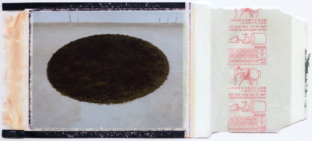 home soil / process 3# / polaroid 100 / h.pálmason 2016