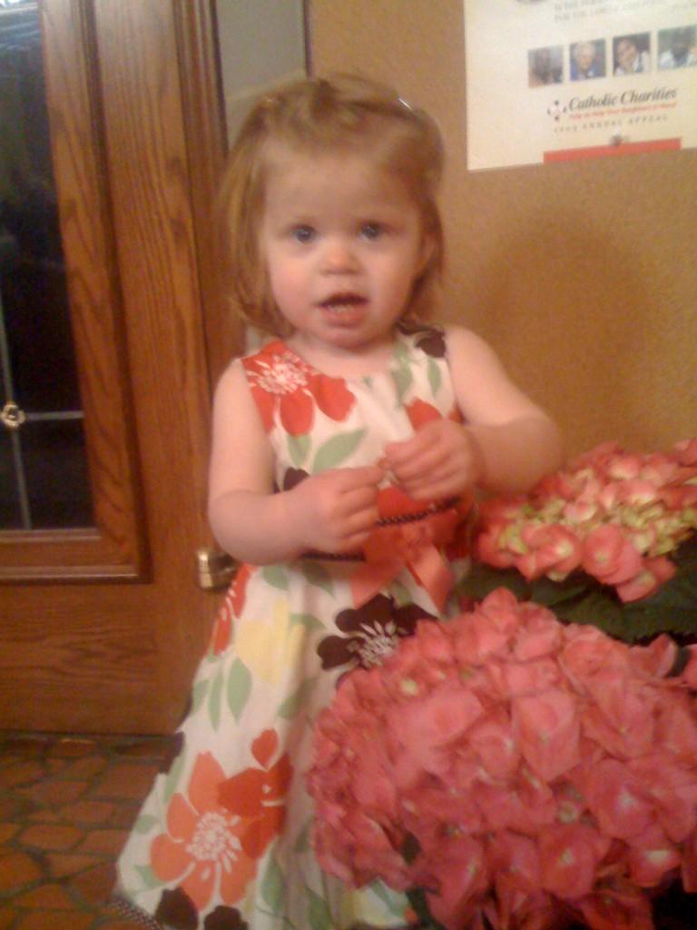 Loula Loves Flowers