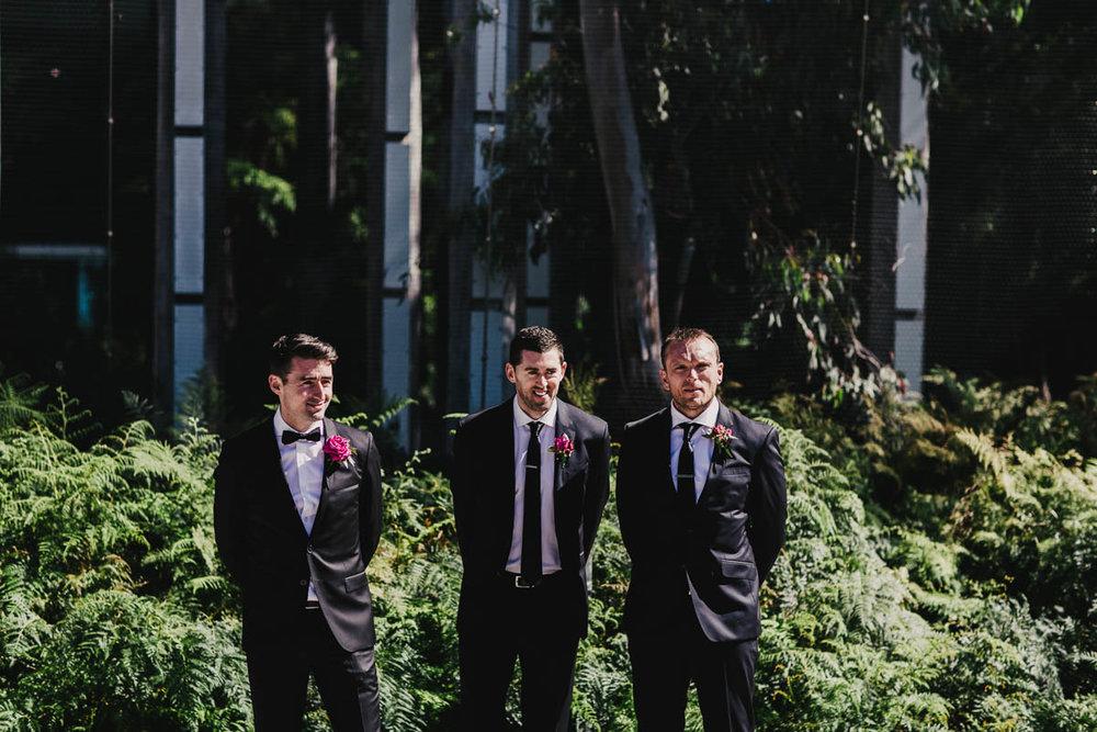 Melbourne Museum Wedding Photographer-16.jpg