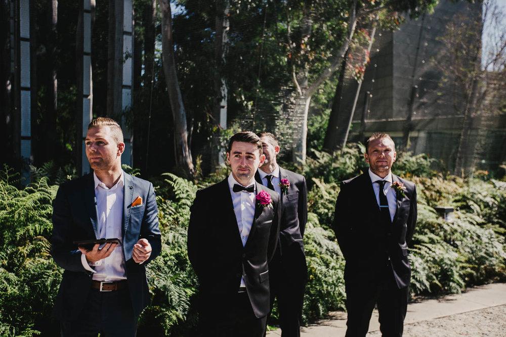 Melbourne Museum Wedding Photographer-20.jpg