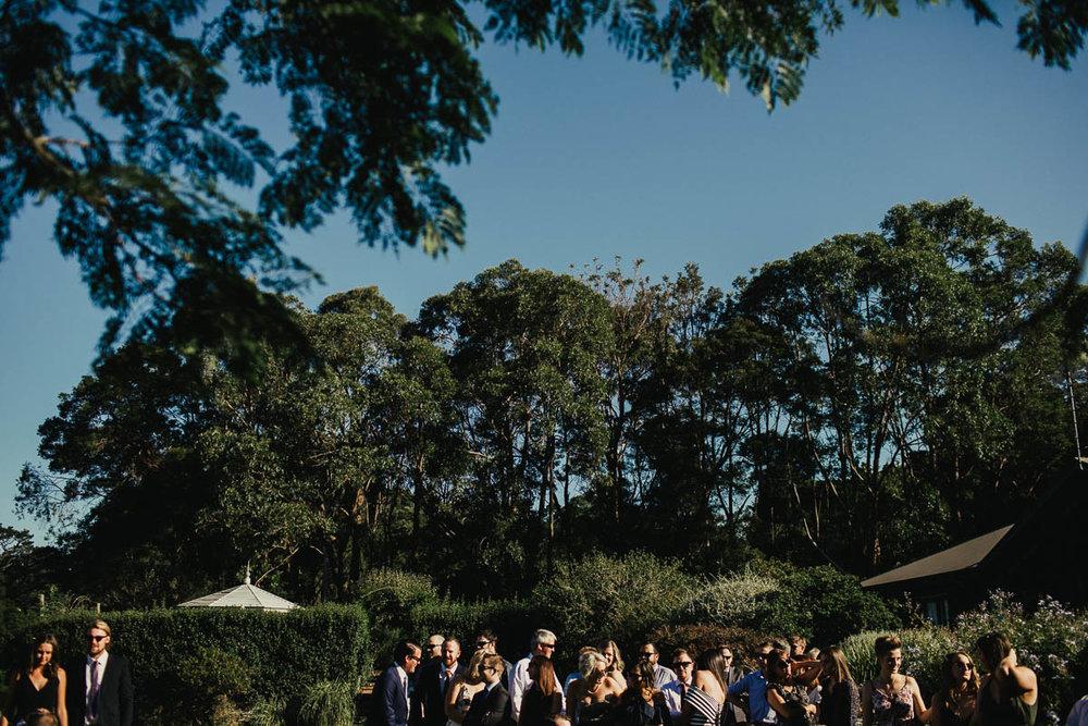 Shannon & Kate Mantons Creek Wedding Photographer-51.jpg