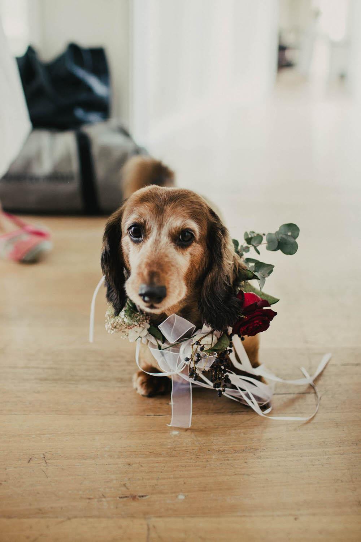 Tanglewood Estate Wedding Photographer-25.jpg