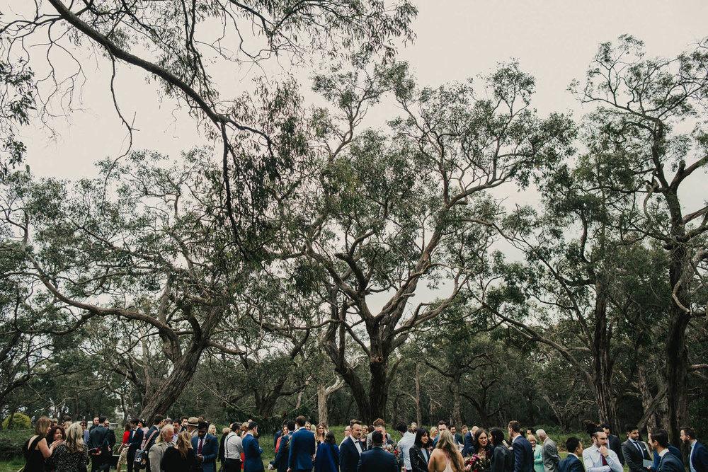 Tanglewood Estate Wedding Photographer-116.jpg
