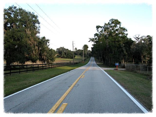 Rural_Road.jpg
