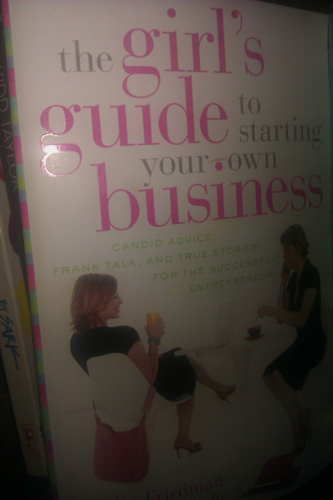 The Girls Guide to Starting your Own Business