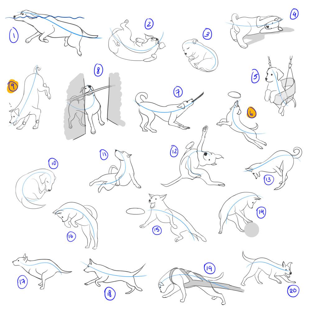 animal_play_poses_01.jpg
