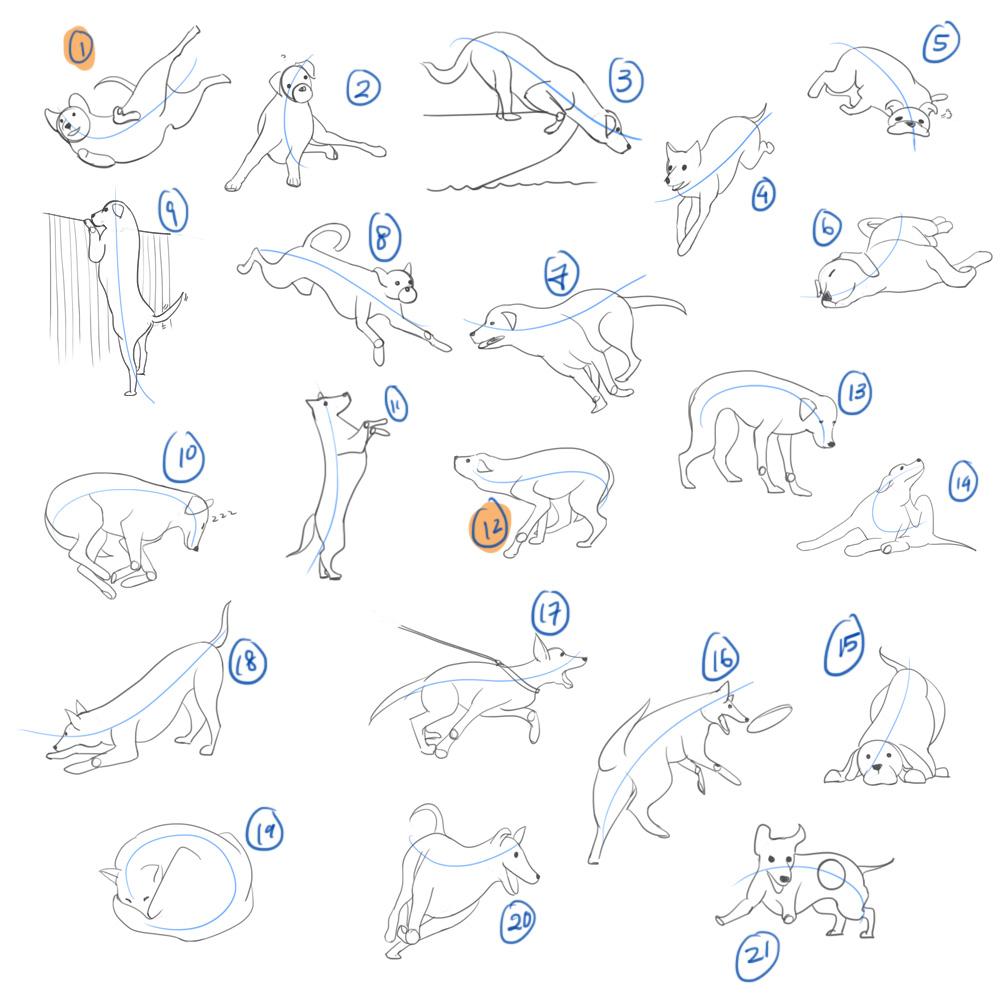 animal_motion_poses_01.jpg