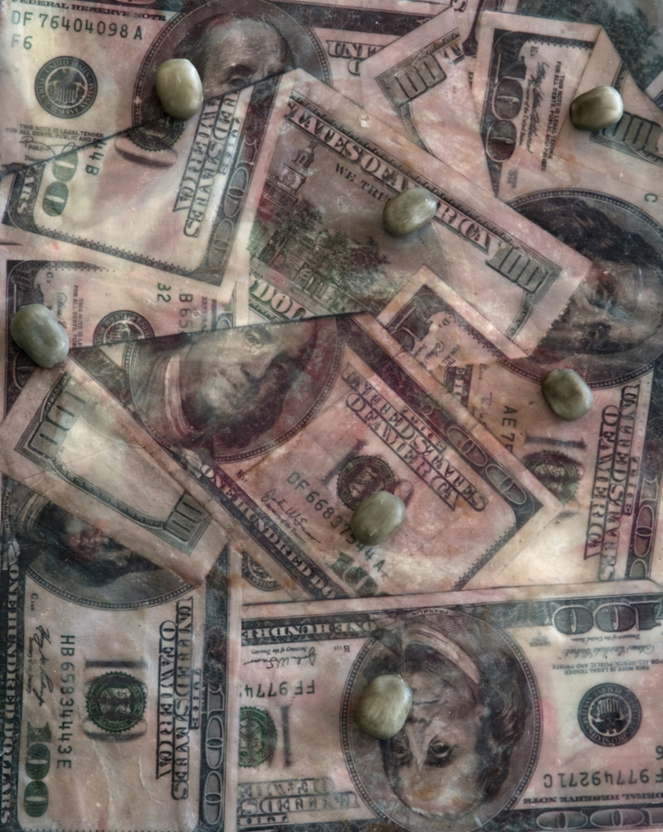 Wall Street Infestation: American Dog Ticks