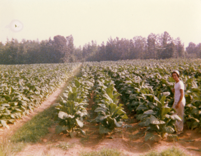 My Father in the Fields