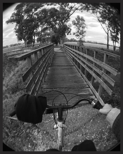 My daily bike commute involves many of those wooden bridges, some of them sounds like a sinking boat.