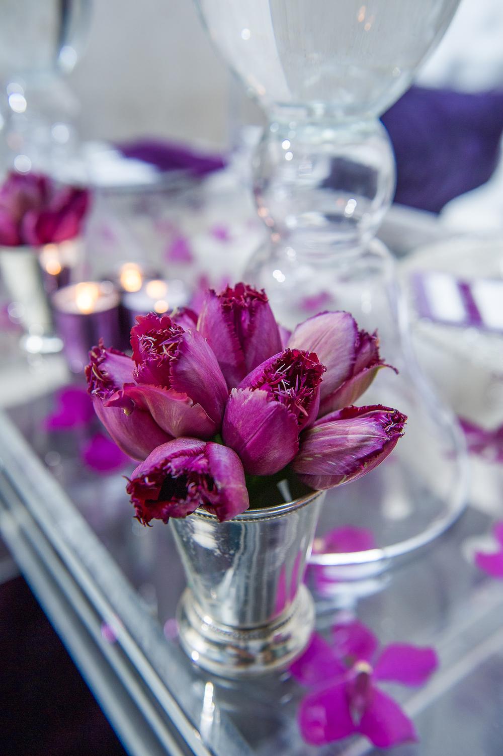 stewart_bertrand_wedding_photography_sdsw13-1027.jpg