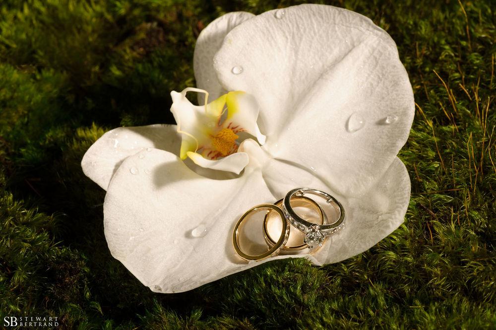 0033-La-Valencia-Wedding-Stewart-Bertrand-Photography-fe13.jpg