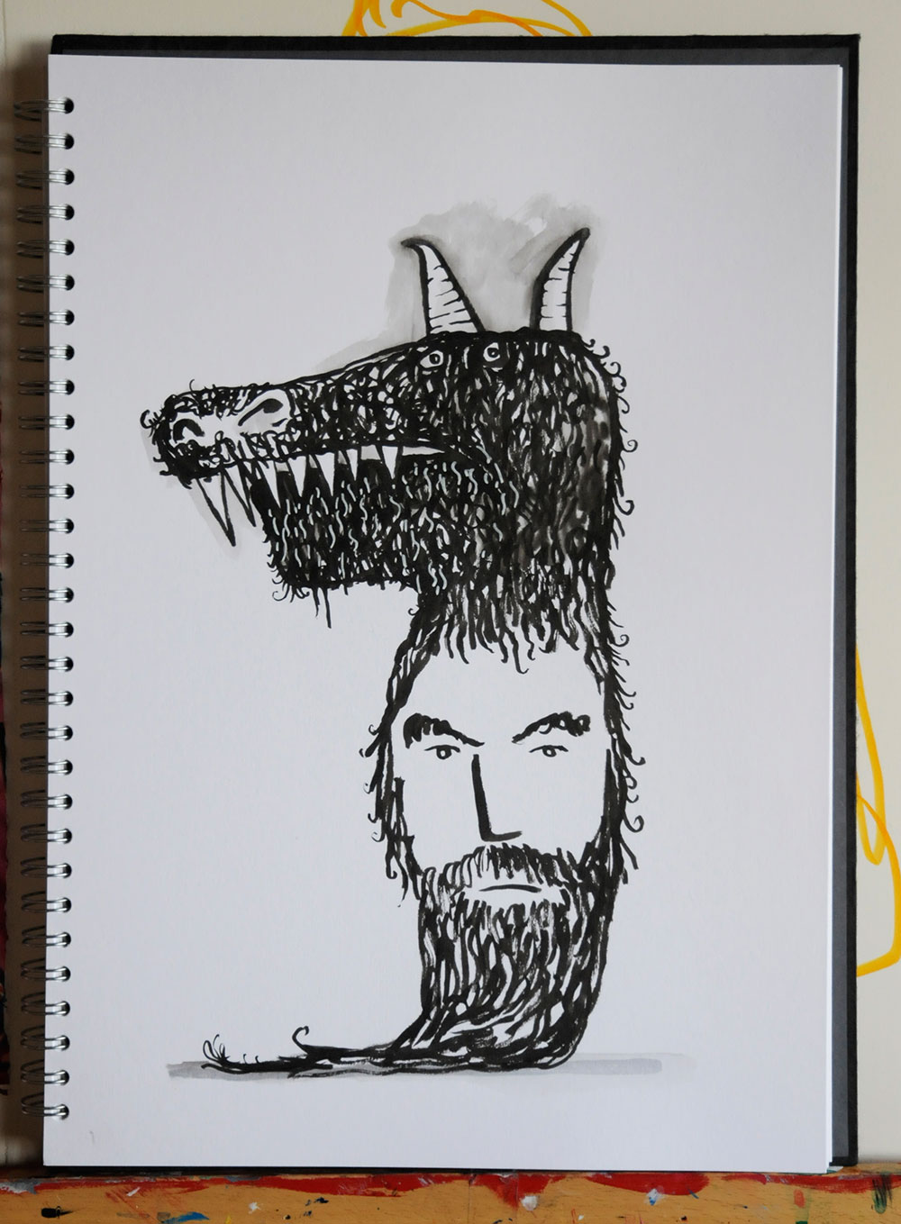 Donkey-Skin004web.jpg