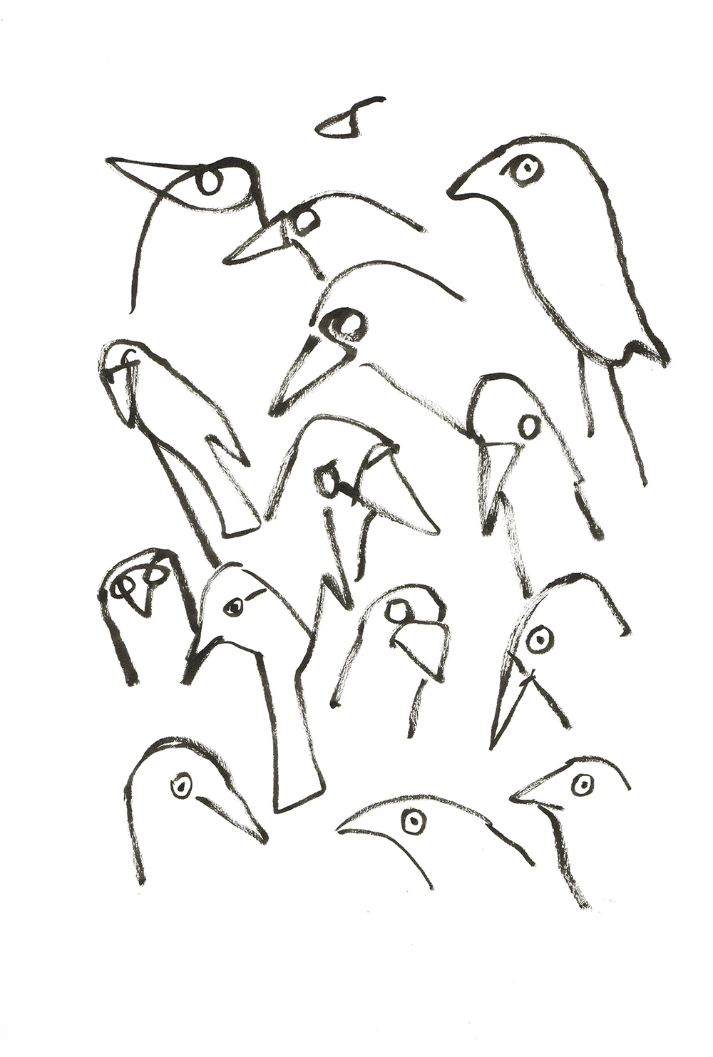 20 seconds of Jackdaws