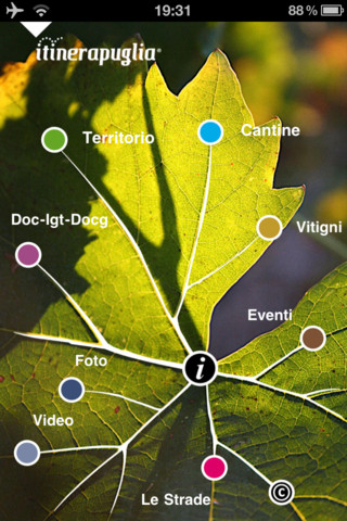 Strade del Vino - Puglia