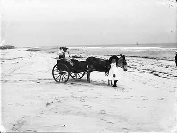 Hotel Long Beach 1890 Donkey.jpg