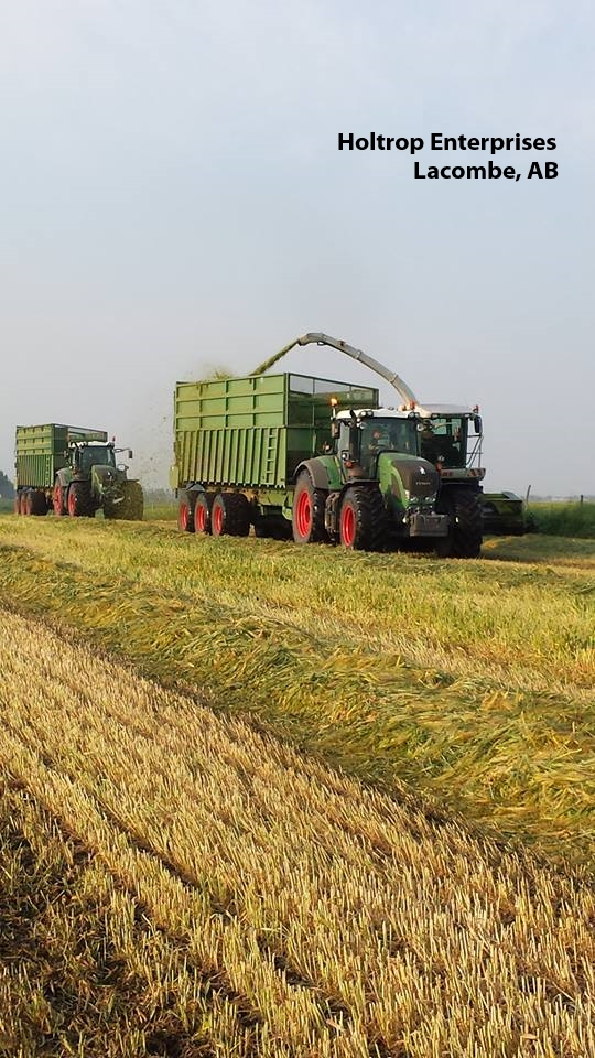 Holtrop Silaging 2.jpg