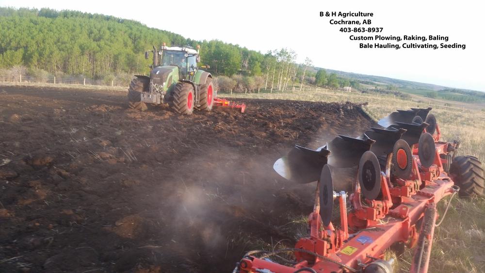 B & H Agriculture 2.jpg