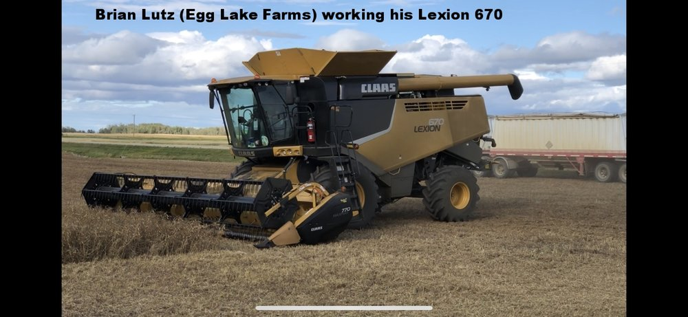 Lutz, Brian (Egg Lake Farm) in his Lexion 670.jpeg