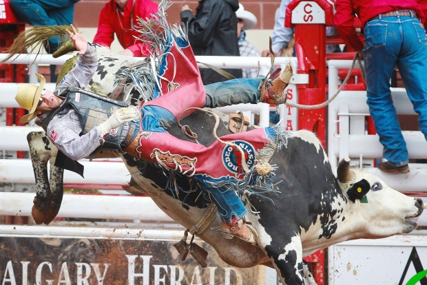 "Texas bull rider J. W. Harris at the 2013 Calgary Stampede. ""I don't ride bulls for the money,"" his colleague, Douglas Duncan told the Herald, ""I ride them for fun.""  (Photo:  Calgary Herald )"